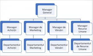 Organigrama matrice